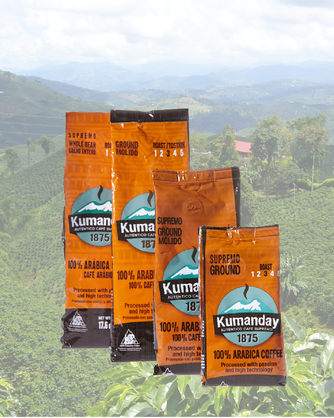 Kumanday Coffee Catalogue